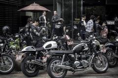 moto.free (15)